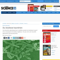 Du biodiesel bactérien