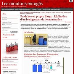 Produire son propre Biogaz: Réalisation d'un biodigesteur de démonstration