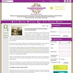 """Humanité et Biodiversité - La communauté des adhérents et sympathisants de l'association """"Humanité et Biodiversité"""""""