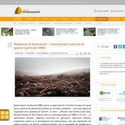 Pandémies et biodiversité: l'avertissement solennel de quatre experts de l'IPBES