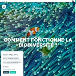 Biodiversité en danger : causes et conséquences