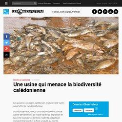 Une usine qui menace la biodiversité calédonienne
