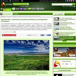 Biodiversité : comment les prairies résistent au changement climatique