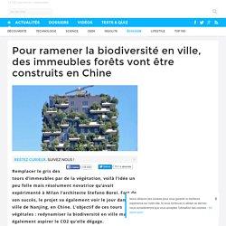 Pour ramener la biodiversité en ville, des immeubles forêts vont être construits en Chine