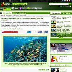 La biodiversité des poissons coralliens mise en danger par l'Homme