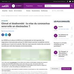 Climat et biodiversité : la crise du coronavirus sera-t-elle un électrochoc ?