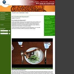 Biodiversité 2010 - CNRS - Et si la biodiversité disparaissait?