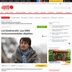 Loi biodiversité. Les ONG environnementales dépitées