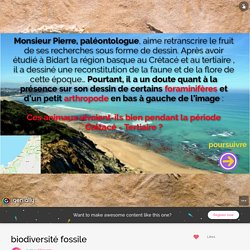 biodiversité fossile by titinuage on Genial.ly