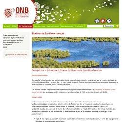 Biodiversité & milieux humides