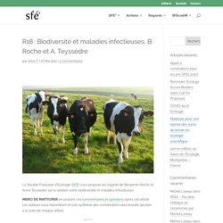 SFECOLOGIE 27/05/11 R18 : Biodiversité et maladies infectieuses, B. Roche et A. Teyssèdre