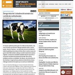 MULTINATIONALES 01/02/16 Élevage industriel : la biodiversité animale sous contrôle des multinationales