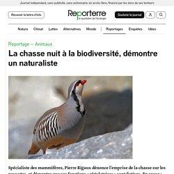 La chasse nuit à la biodiversité, démontre un naturaliste