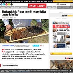 Biodiversité : la France interdit les pesticides tueurs d'abeilles