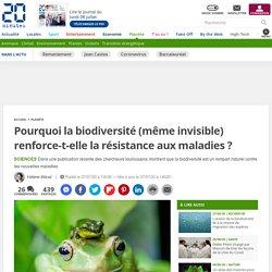 Pourquoi la biodiversité (même invisible) renforce-t-elle la résistance aux maladies ? 7 juillet 2020