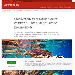 Biodiversitet: En million arter er truede – men vil det skade mennesket?