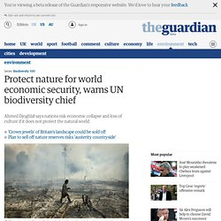 Protect nature for world economic security, warns UN biodiversity chief