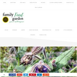 Garden Better with Biodiversity & Wild Pollinators