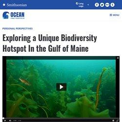 Exploring a Unique Biodiversity Hotspot In the Gulf of Maine