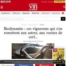 Biodynamie: ces vignerons qui s'en remettent aux astres, aux vessies de cerf...