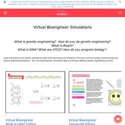 Virtual Bioengineer Simulations – Amino Labs