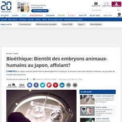 Bioéthique: Bientôt des embryons animaux-humains au Japon, affolant?