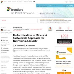 Front Plant Sci. 2017 Jan 23;8:29. Biofortification in Millets: A Sustainable Approach for Nutritional Security.