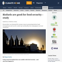 Biofuels are good for food security - study