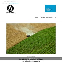 #11 How to farm biofuels without harming food security