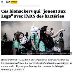 """Ces biohackers qui """"jouent aux Lego"""" avec l'ADN des bactéries- 15 novembre 2014"""