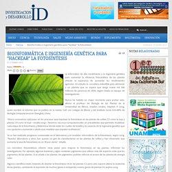 """Bioinformática e ingeniería genética para """"hackear"""" la fotosíntesis - Investigación y Desarrollo"""