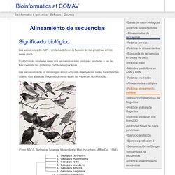 Alineamiento de secuencias — Bioinformatics at COMAV 0.1 documentation