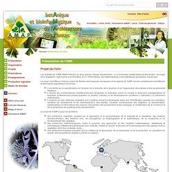 UMR AMAP - botAnique et bioinforMatique de l'Architecture des plantes