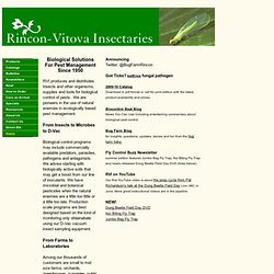 Organic Pest Control, Biological Solutions for Pest Management, Rincon Vitova Insectaries