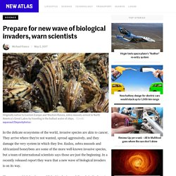 Prepare for new wave of biological invaders, warn scientists - New Atlas