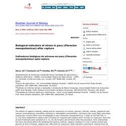 Braz. J. Biol. vol.69 no.2 São Carlos May 2009 Biological indicators of stress in pacu (Piaractus mesopotamicus) after capture