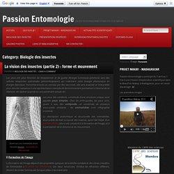 Biologie des insectes Archives - Passion Entomologie