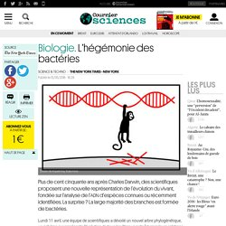 Biologie. L'hégémonie des bactéries