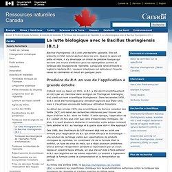 RESSOURCES NATURELLES CANADA 27/02/14 La lutte biologique avec le Bacillus thuringiensis (B.t.) (tordeuse des bourgeons de l'épi