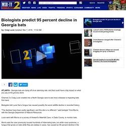 WSBTV 07/03/16 Biologists predict 95 percent decline in Georgia bats