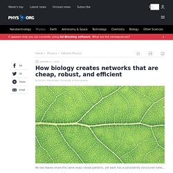 How biology creates networks that are cheap, robust, and efficient