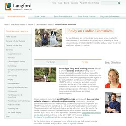 Langford Veterinary Services