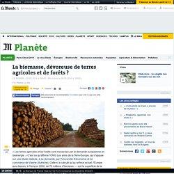 La biomasse, dévoreuse de terres agricoles et de forêts ?