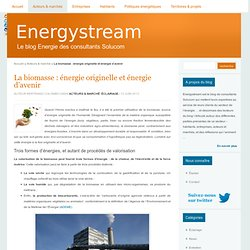 La biomasse : énergie originelle et énergie d'avenir