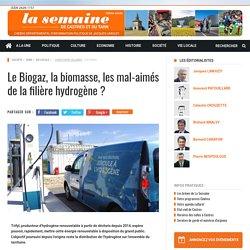 Le Biogaz, la biomasse, les mal-aimés de la filière hydrogène?