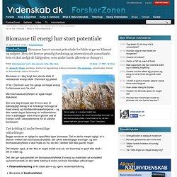 Biomasse til energi har stort potentiale