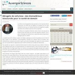 Aérogels de cellulose : des biomatériaux biosourcés pour la santé de demain - Auvergne Sciences