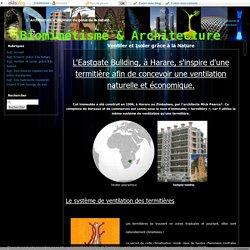 Ventiler et Isoler grâce à la Nature - Biomimétisme & Architecture