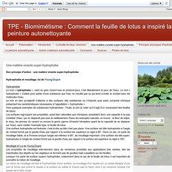TPE - Biomimétisme : Comment la feuille de lotus a inspiré la peinture autonettoyante: Une matière vivante super-hydrophobe