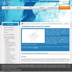 Biomimétisme en milieu marin